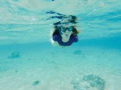 Snorkeling - Cozumel
