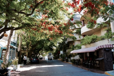 Les rues fleuries - Playa del Carmen