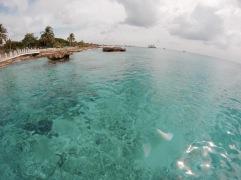 Vue depuis la mer - Cozumel