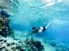 Pedro et le snorkeling - Cozumel