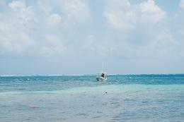 Mer - Puerto Morelos