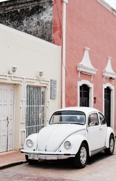 coccinelle et ruelle - Valladolid