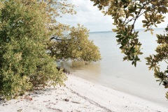 Punta Coco - Holbox