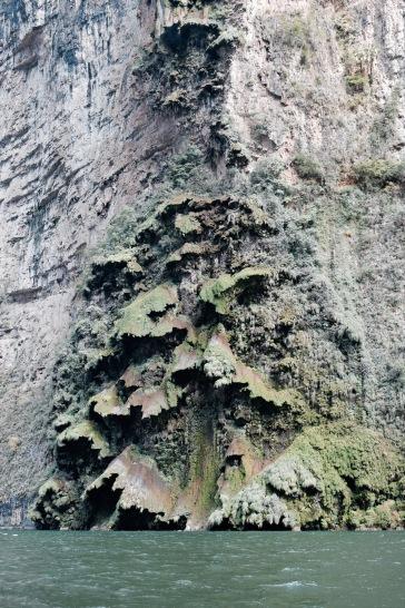Falaise recouverte de mousse - Cañon del Sumidero