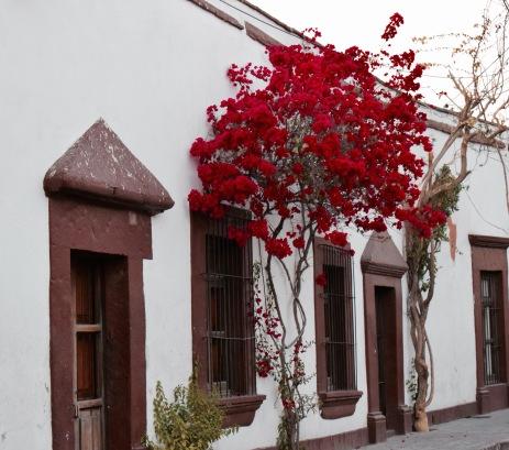 Ruelles - Querétaro