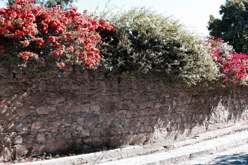 Ruelles - San Miguel de Allende