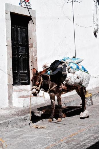 Ruelles - Guanajuato