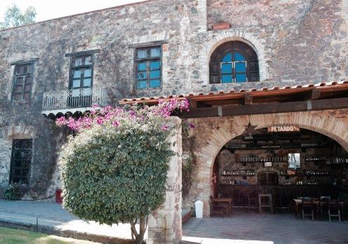 Bocamina de San Jamon - Guanajuato