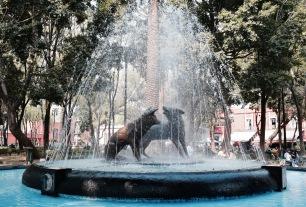 Fontaine de coyotes - Coyoacan