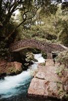 Parque Nacional Barrancadel Cupatitzio - Uruapan