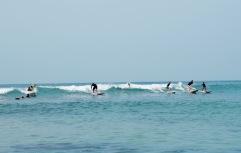 Surfeurs - Puerto Escondido