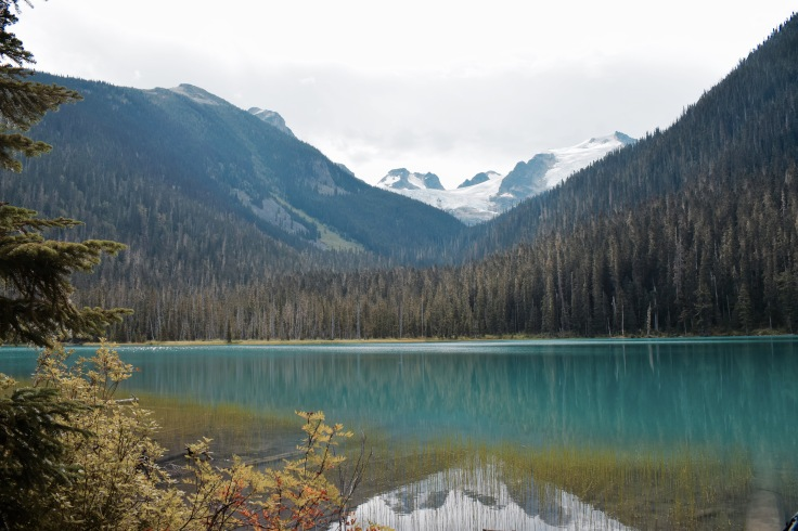 Lower Lake - Joffre Lake