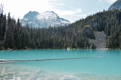 Middle Lake - Joffre Lake