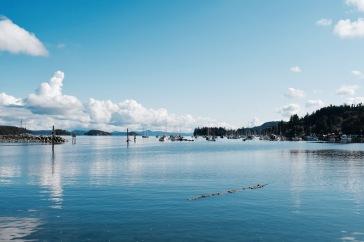 Port - Salt Spring Island