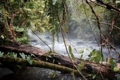 Sources thermales - La Fortuna