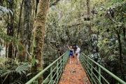 Parc National Volcan Arenal - La Fortuna