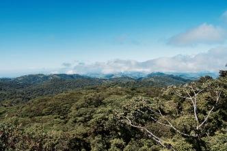 Mirador de la Réserve Bosque Nebuso Santa Elena - Région de Monteverde